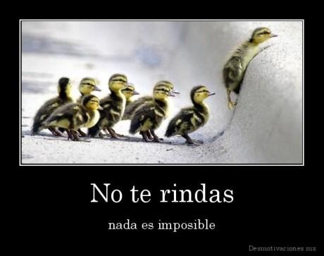 No-te-rindas-nada-es-imposible_134411069416