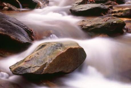 stream rock_in_stream_0319_600x400